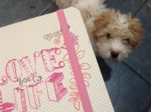 Milo helping me plan my future!